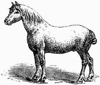Don't Pony Up Your Data to Fareit